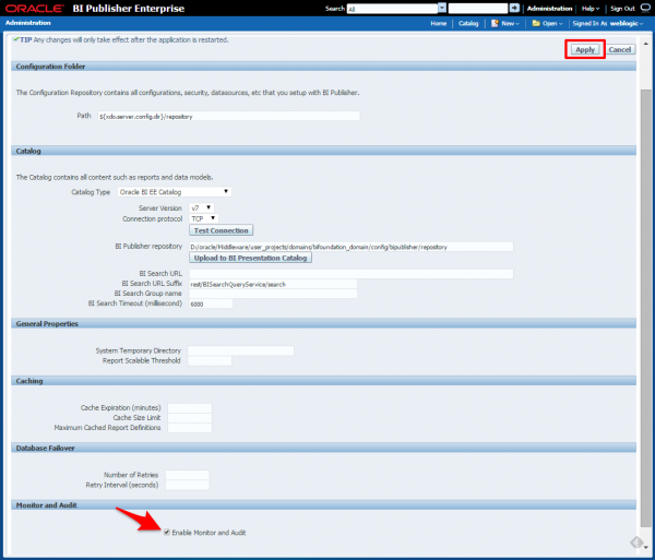 Fig 2 - The server configuration screen where you enable Monitoring and Auditing